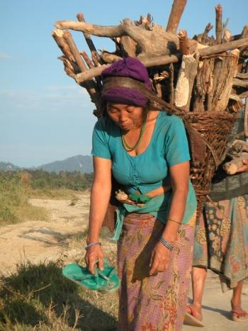 Brennholzsammeln in Nepal